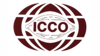 ICCO Reports Drop In Cocoa Prices