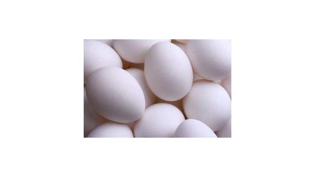 eggs1-300x200.jpg
