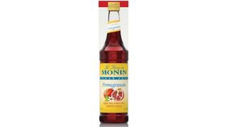 Monin Sugar Free Syrups