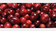 Bipartisan Caucus Seeks To Exempt Cranberries From Federal Sugar Restrictions