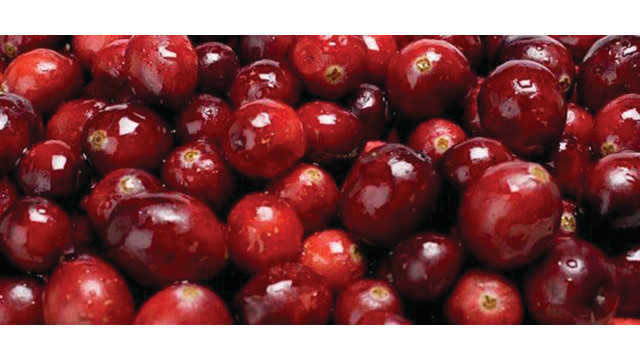 cranberries_10734207.psd