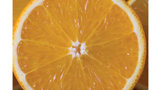 orange-foroj_10779825.psd