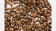 USDA Report Forecasts Decline In World Coffee Production For 2014/15
