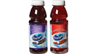 Ocean Spray Acquires Cranberry Operations In Chile
