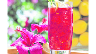 Gaviña Presents Specialty Iced Tea