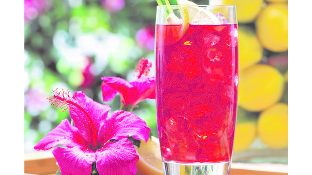 Gaviña Presents Specialty Iced Tea